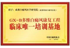 GX-B多维白癜风康复工程临床唯一培训基地